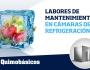 LABORES DE MANTENIMIENTO EN CÁMARAS DEREFRIGERACIÓN